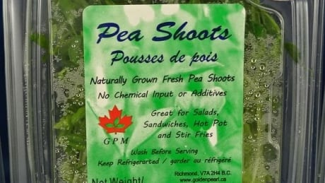 Pea shoots recalled after possible listeria contamination