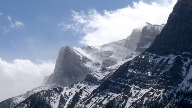 rocky mountains near canmore.'