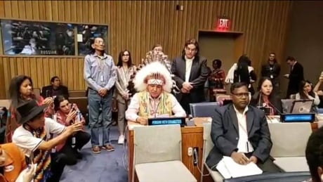 FSIN pitches direct link between First Nations and Buckingham Palace at UN forum