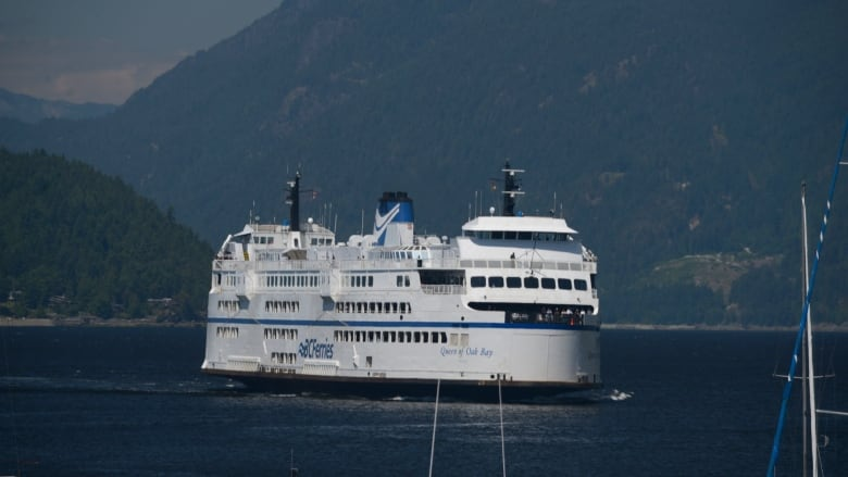 BC Ferries ship stops to let black bear swim past