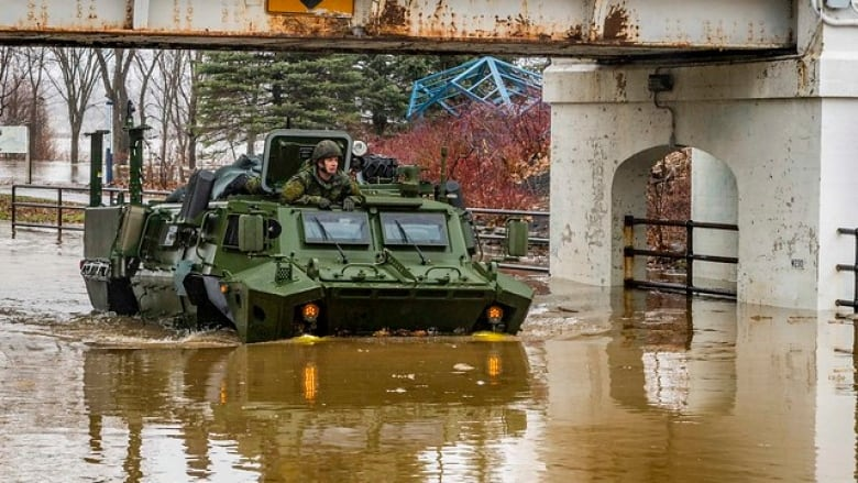 Canadian capital of Ottawa declares state of emergency as waters swell