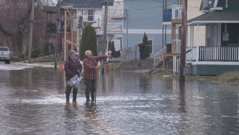 Image result for ottawa river flood