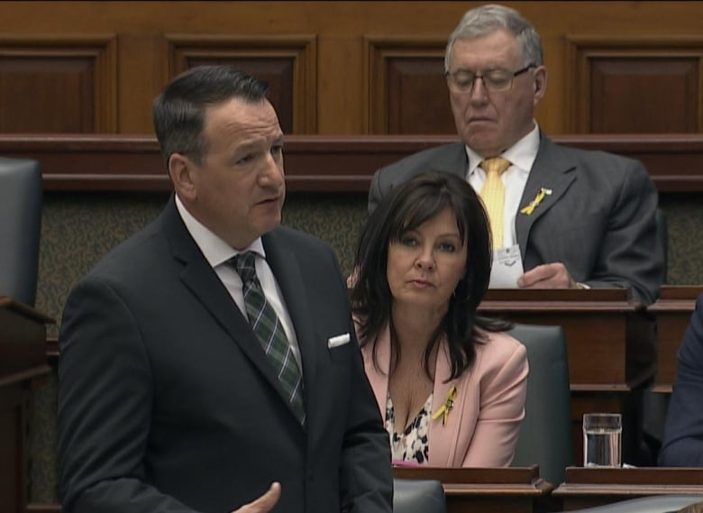 Ontario Minister of Energy, Northern Development and Mines and Indigenous Affairs Greg Rickford said in question period that the province is ready to move forward to help Kashechewan.  (CBC News)