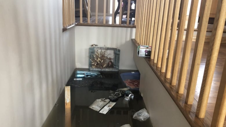 'Total devastation': 82-year-old recounts visit to submerged home in Sainte-Marthe-sur-le-Lac