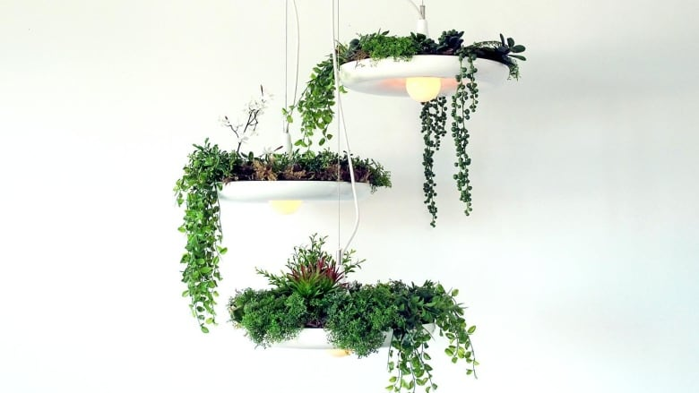 Plant Products To Take Your Indoor Gardens To The Next Level Cbc Life
