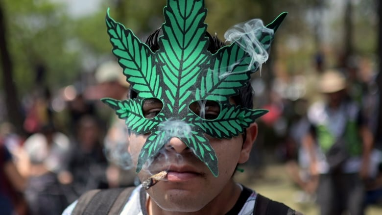Sparking up a trend: These nations are following Canada's lead on legal cannabis