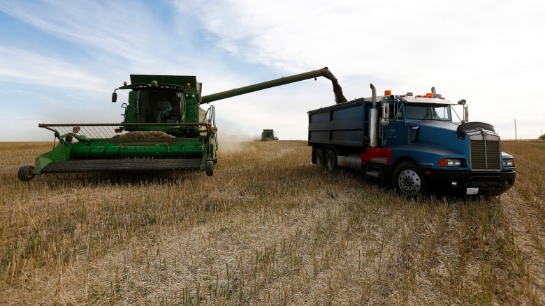 No end in sight': Worry sets in as Alberta farmer income drops 68