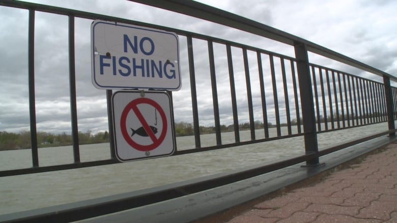 Amherstburg will expand fishing area in Navy Yard Park