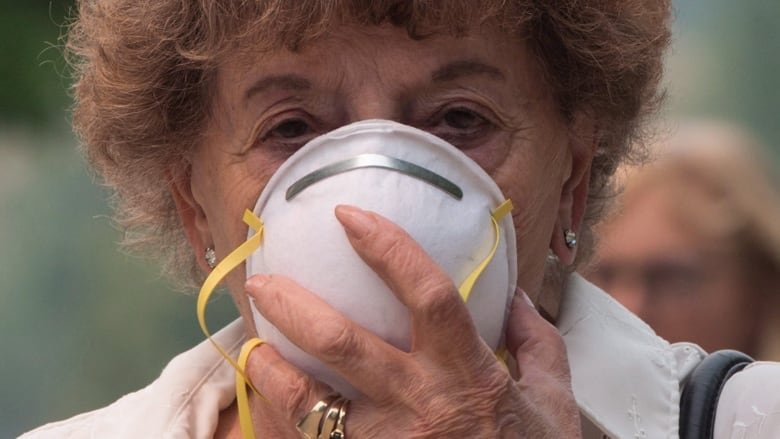 Air pollution hurts Canadians' life expectancy, says UBC study