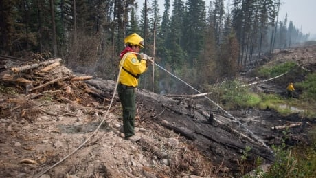 Researchers are using artificial intelligence to help predict the next wildfire