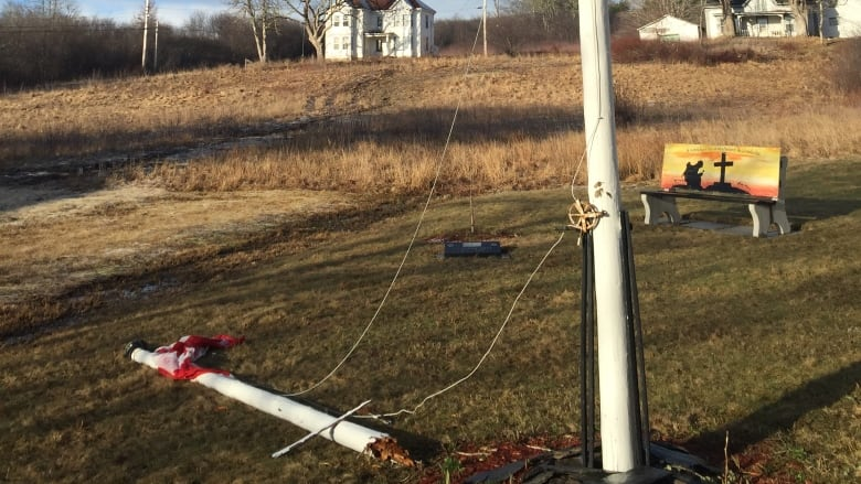 Broken cenotaph flagpole spurs patriotic students to action