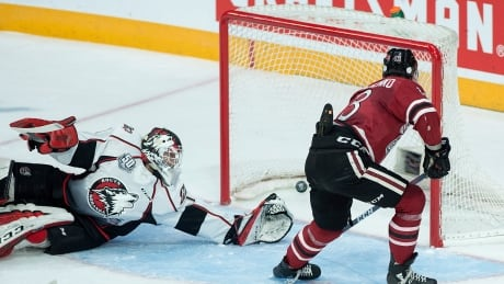 Guelph opens with win over Rouyn-Noranda