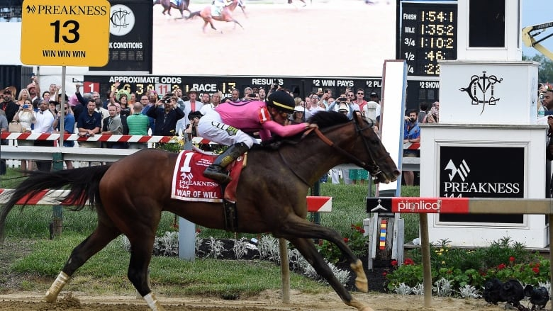 War of Will wins the Preakness Stakes