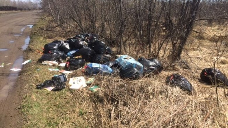 Thunder Bay forces illegal dumpers to clean up their messes