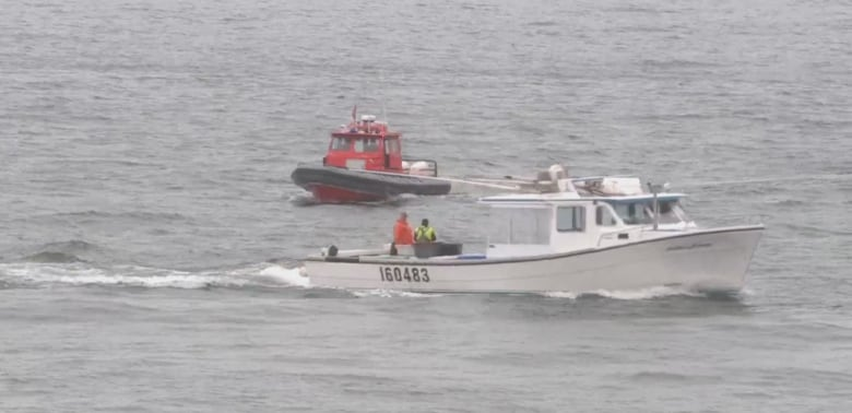 60 boats, coast guard, searching for man overboard off P.E.I. North Shore