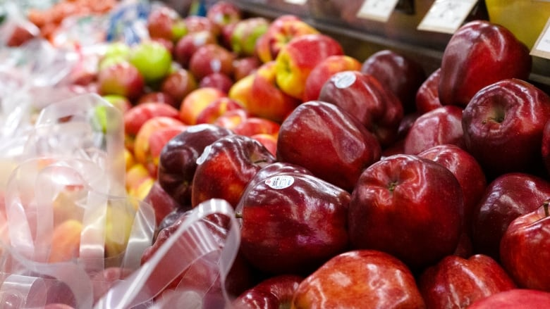 Fewer apples, but better quality expected for 2019 Quebec harvest