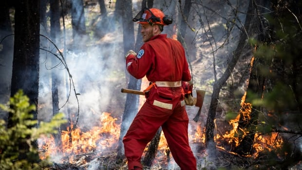 COVID-19 forces B.C. authorities to change emergency response to wildfires and floods   CBC News