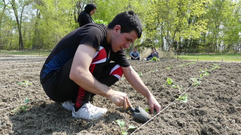 Farming project helps Yazidi refugees return to roots