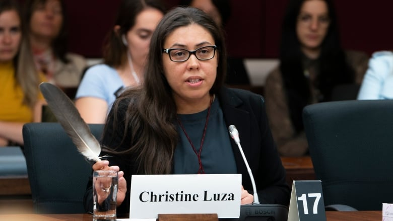 Indigenous youth leaders address Senate committee on