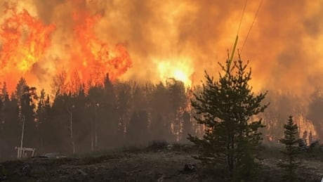 Pickle Lake Forest Fire
