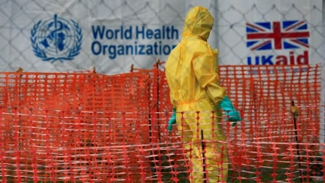WHO deciding whether to declare Ebola emergency in Congo