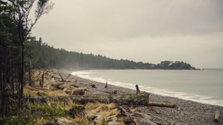 No smoke: Haida Gwaii only place in B.C. unaffected by wildfire haze since 2017
