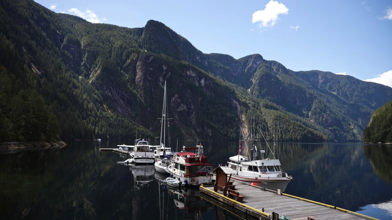 Deadline looms for charity trying to buy 800-hectares for park in B.C.'s Princess Louisa Inlet
