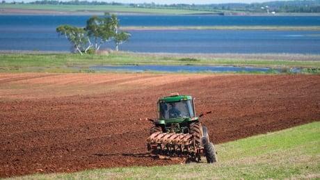 PEI spring planting potato farming 2019
