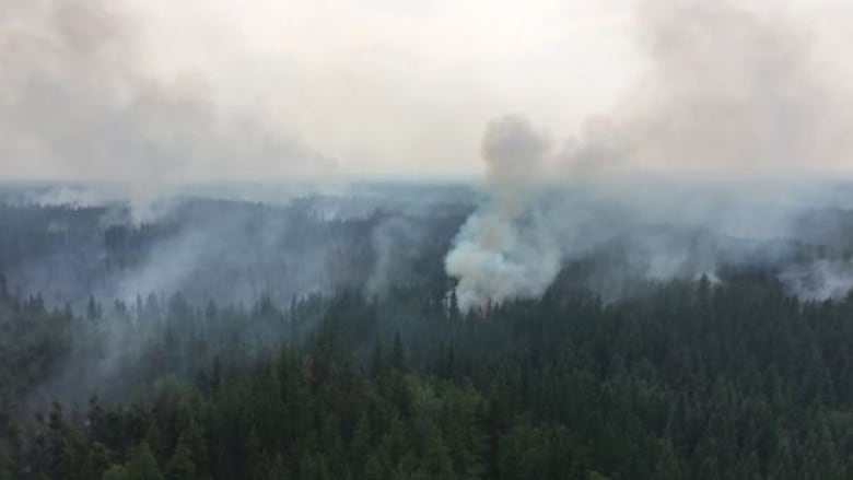 Massive Chuckegg Creek wildfire now 60 per cent contained, province says