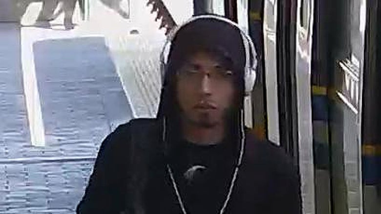 Police seek suspect who exposed himself to SkyTrain passenger
