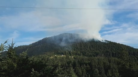 Crews battle wildfire overnight near Pender Harbour, B.C.