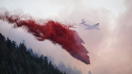 pender harbour cecil hill wildfire aircraft fire retardant