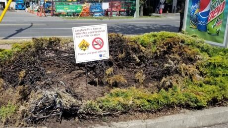 7 fires in 7 days caused by discarded cigarette butts in Langford, B.C.