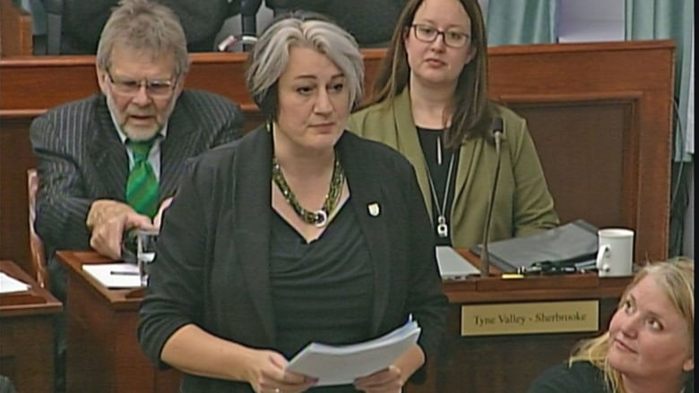 Why Green MLA Hannah Bell says she plans to vote against PC's budget