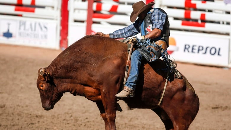 Marcos Gloria Of Edmonton Alberta Wins The Bull Riding