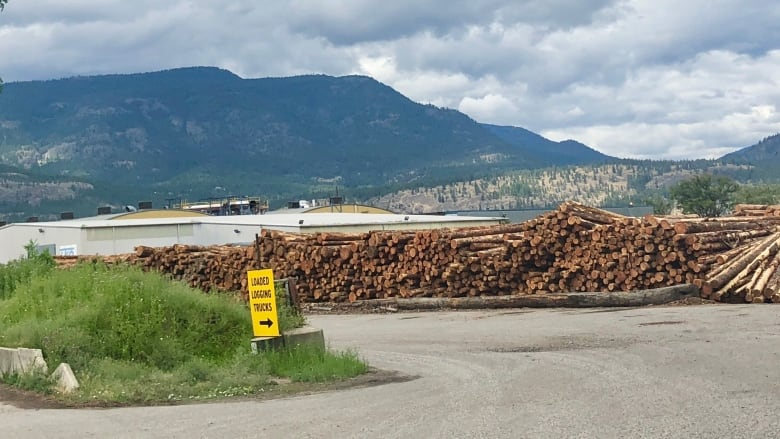 After wave of cuts, worst is over, says major B.C. forest company