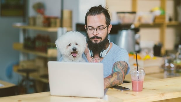 7 of the best places to visit online when you need dog training advice | CBC Life
