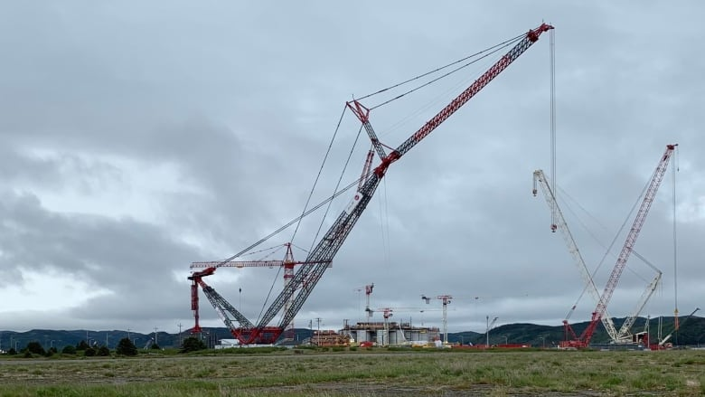 In Argentia? Check out one of the world's largest cranes at