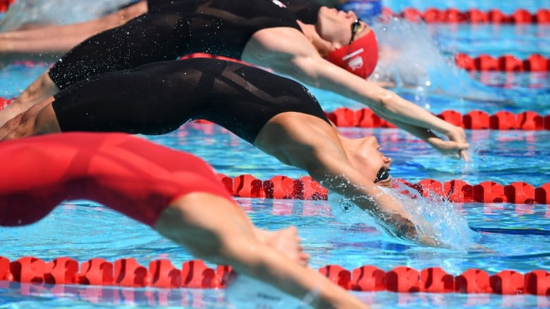 What you need to know about the world aquatics championships