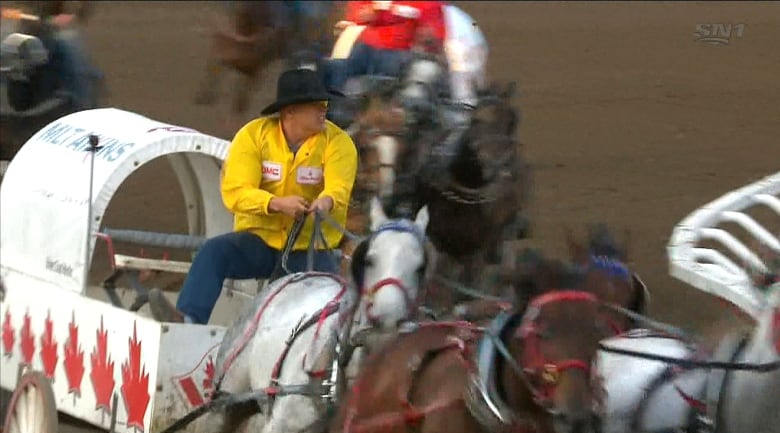 Do chuckwagon races amount to 'cruel' abuse or save horses