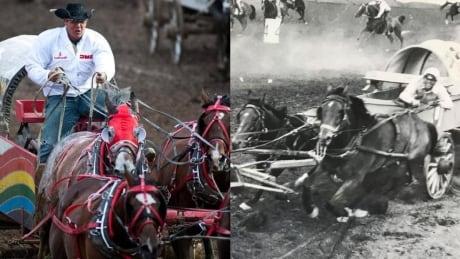 Rangeland Derby History Collage