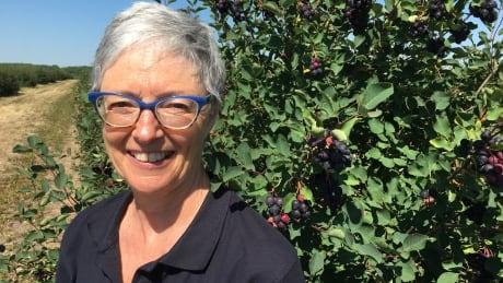 Wendy Rutherford Saskatoons