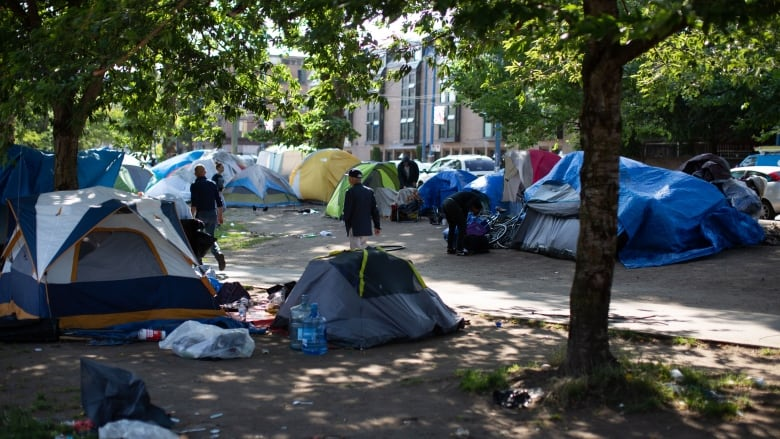 Most Oppenheimer Park residents accept housing, says city