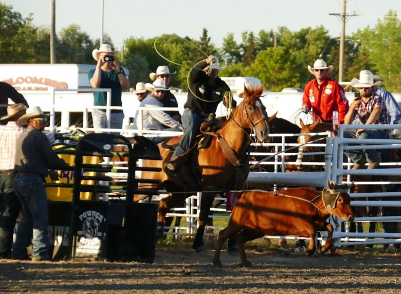 The Manitoba Stampede And Exhibition Which Kicked Off