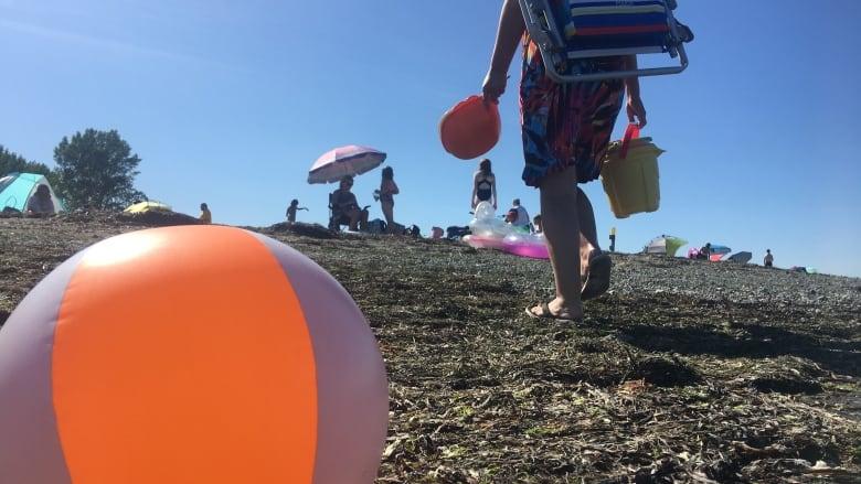 Overcrowding at Delta beach creates another summer 'bottleneck'