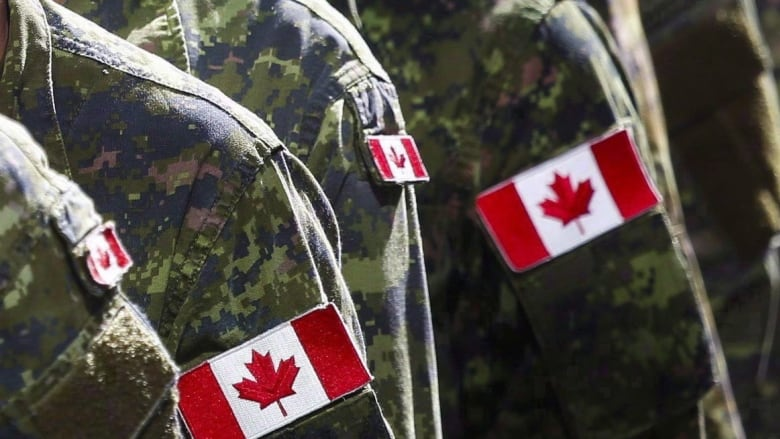 'My country fed me to the wolves:' Veteran slams government settlement for military sexual misconduct victims