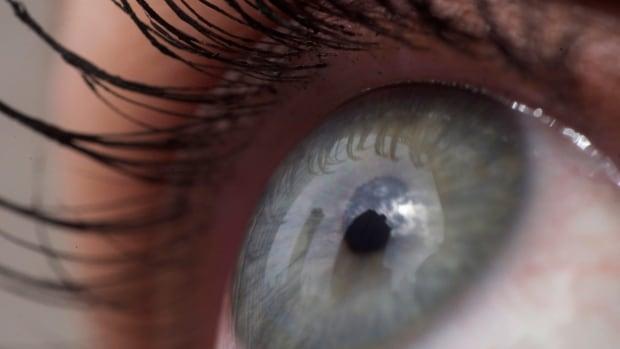 Ontario optometrist dispute has Ottawa patients eyeballing Quebec clinics | CBC News