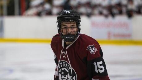 Full face shield hockey
