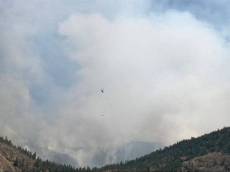 Wildfire in Okanagan Valley nearly triples in size to 600 hectares