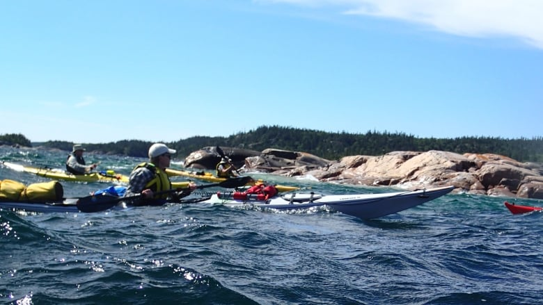 Kayak Adventure Group